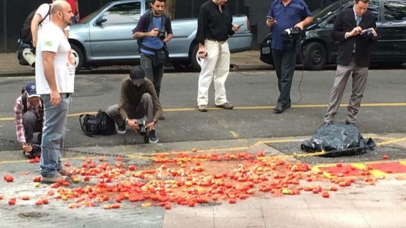 tomate2.jpeg